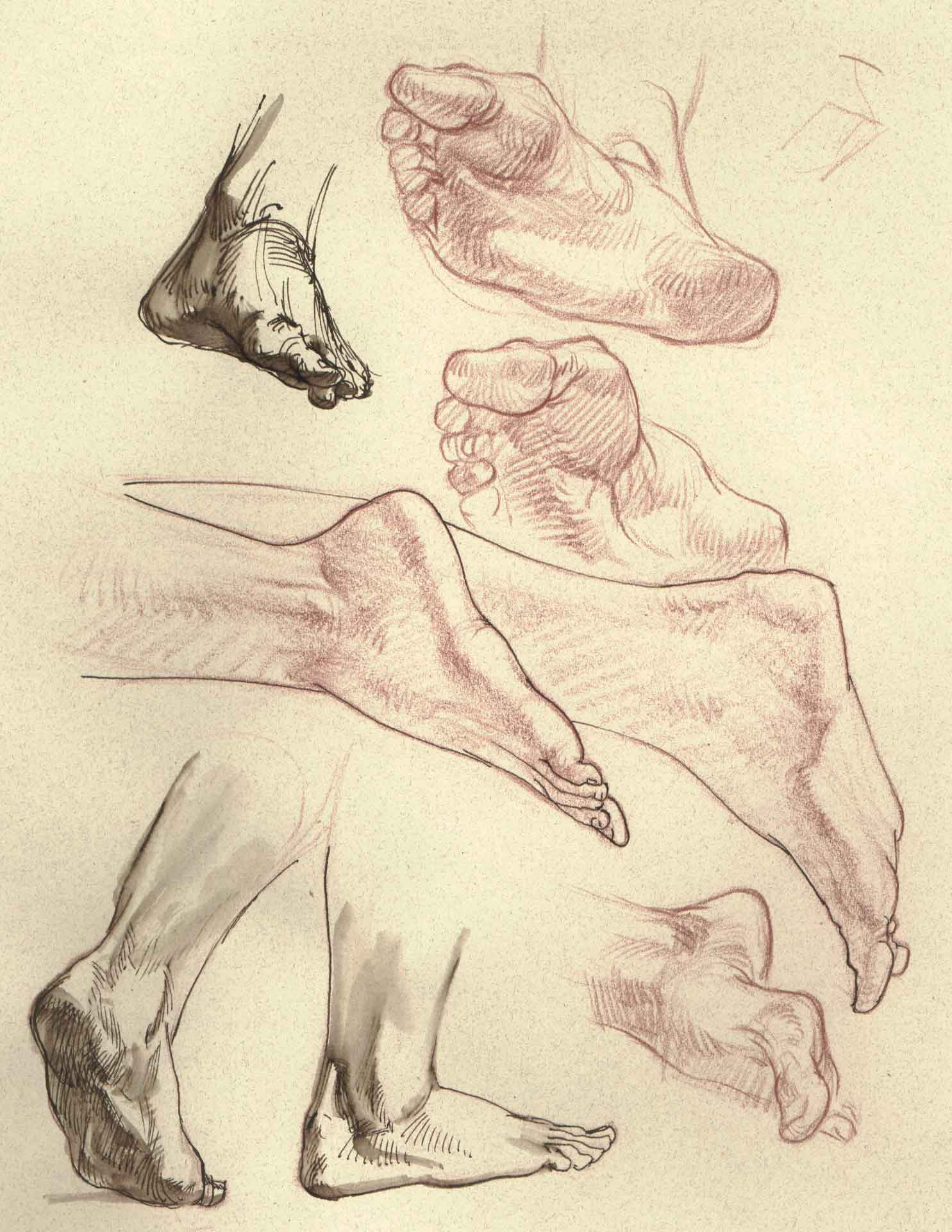 Drawing the Figure: Heads, Hands, and Feet